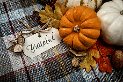 This is a close up photo of a group of small white pumpkins on a plaid table cloth background. There is space for copy.This photo would work well for Thanksgiving and a holiday season in the fall.