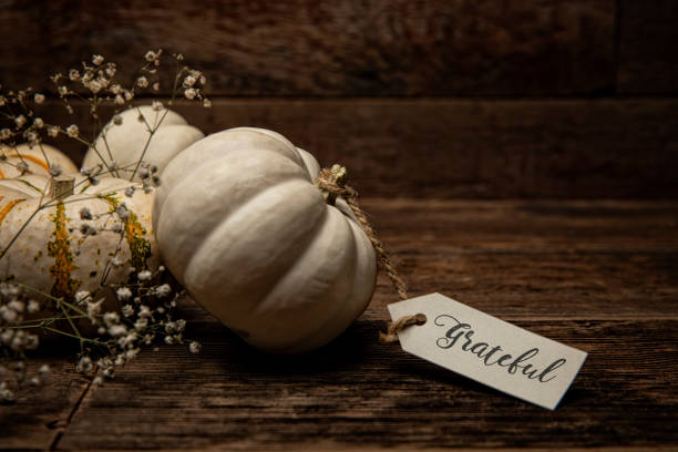 Autumn White Small pumpkins with card on wood background stock photo