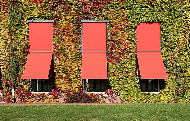 fenêtres d'automne - cosmetique store photos et images de collection