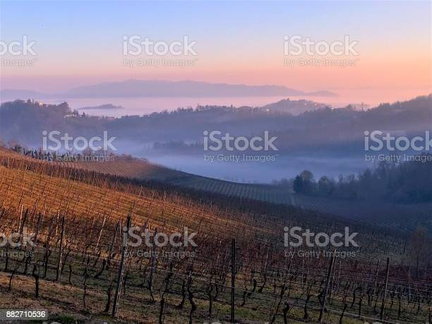 Photo of Autumn Winter Panorama Vineyard with Fog in Raising from the Valleys. Monferrato, Piedmont, Italy