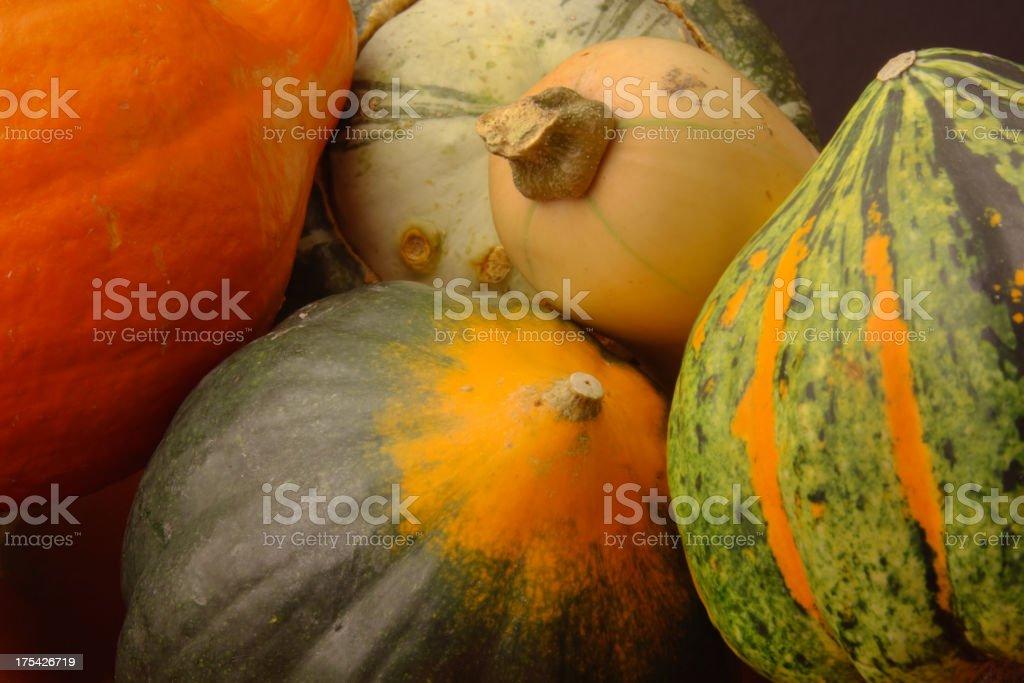Autumn Winter Squash Variety, Butternut, Acorn, Turban Close-up royalty-free stock photo
