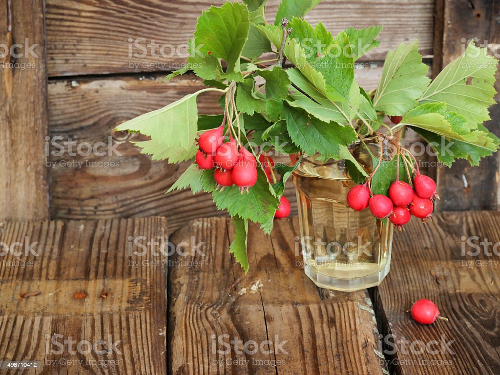 Autumn wooden background with hawthorn berries stock photo