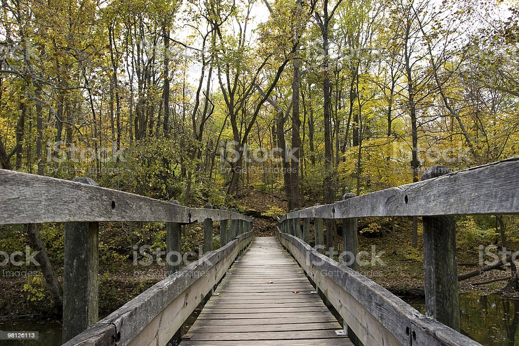 Autumn Wooden Bridge royalty-free stock photo