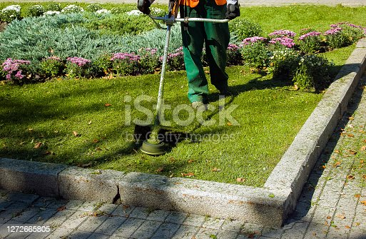 istock Autumn work in the park. The gardener cuts the grass before winter. 1272665805