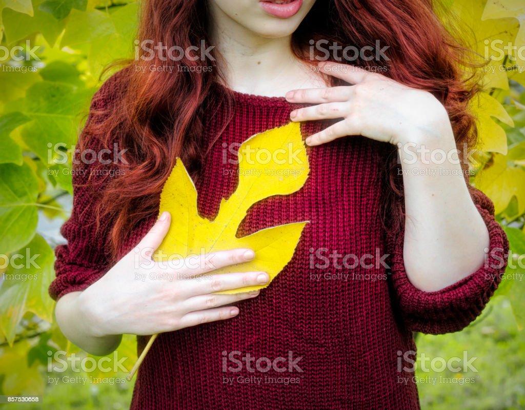 Autumn yellow leaf of sassafras with autumn outdoor girl redhead stock photo