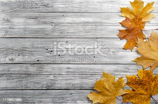 autumn yellow maple leaves on wooden background top view with place for tex flat lay