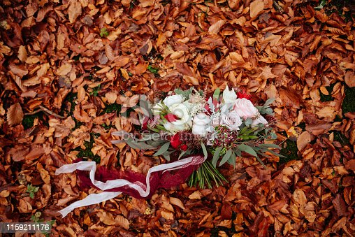 1129427811 istock photo autumnal bridal bouquet. bride holding wedding bouquet 1159211176