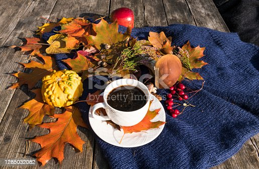 Autumnal maple and oak leaves, cup of black coffee, decorative pumpkin, rowan berry, wild edible mushroom Boletus, red apple and blue scarf on a wooden picnic table