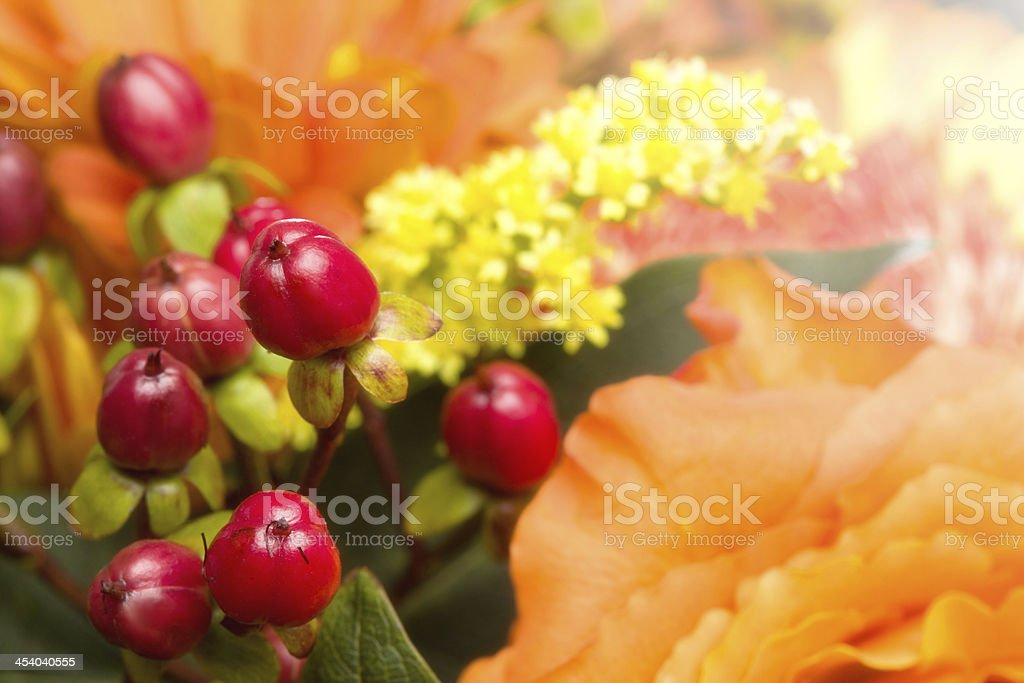 Autumnal Flower bouquet, Close-up Background royalty-free stock photo