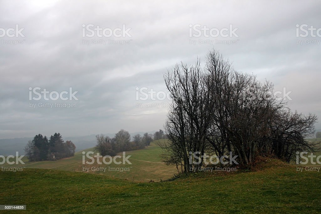autumnal fog stock photo