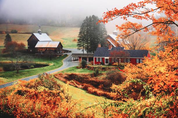 autumnal footpath in autumn stock photo