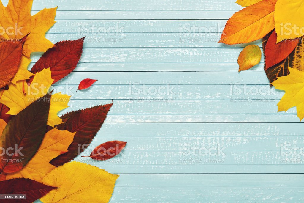 Autumnal frame for your idea and text. In autumn, fallen dry leaves...