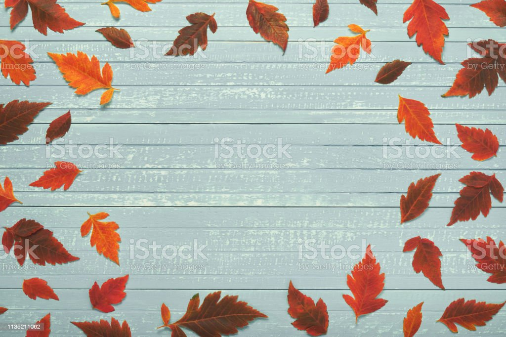 Autumnal frame for your idea. In autumn, fallen dry leaves of yellow,...