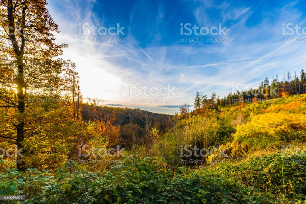 Autumnal landscape of colorful trees in Hoegne Valley, Belgian Ardennes - Photo