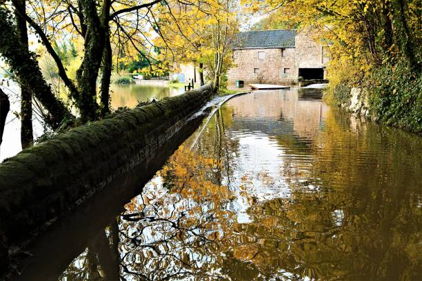 autumnal reflections at sprotbrough flash, doncaster, after major flooding, november, 2019. - doncaster foto e immagini stock