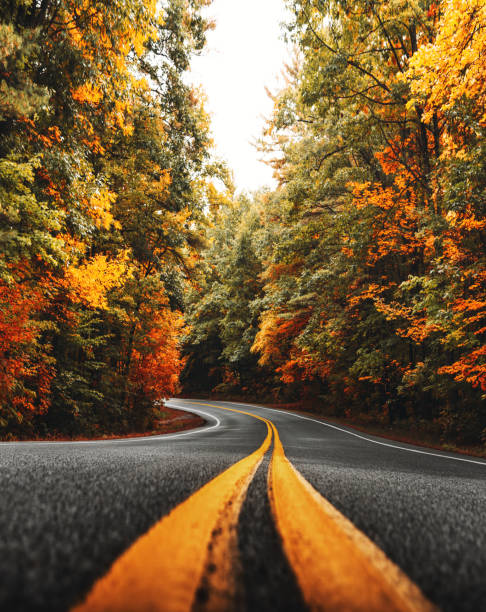 autumnal road in new england autumnal road in new england white mountain national forest stock pictures, royalty-free photos & images