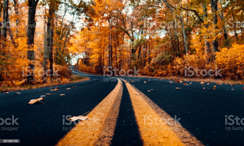 Autumnal road in new hampshire stock photo
