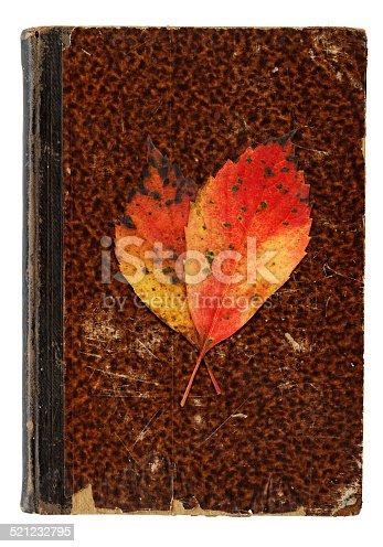 istock Autumnal Still Life - Vanitas Concept 521232795