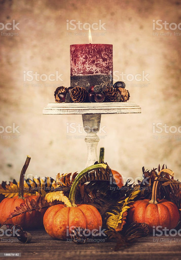 Autumnal Thanksgiving Arrangement royalty-free stock photo