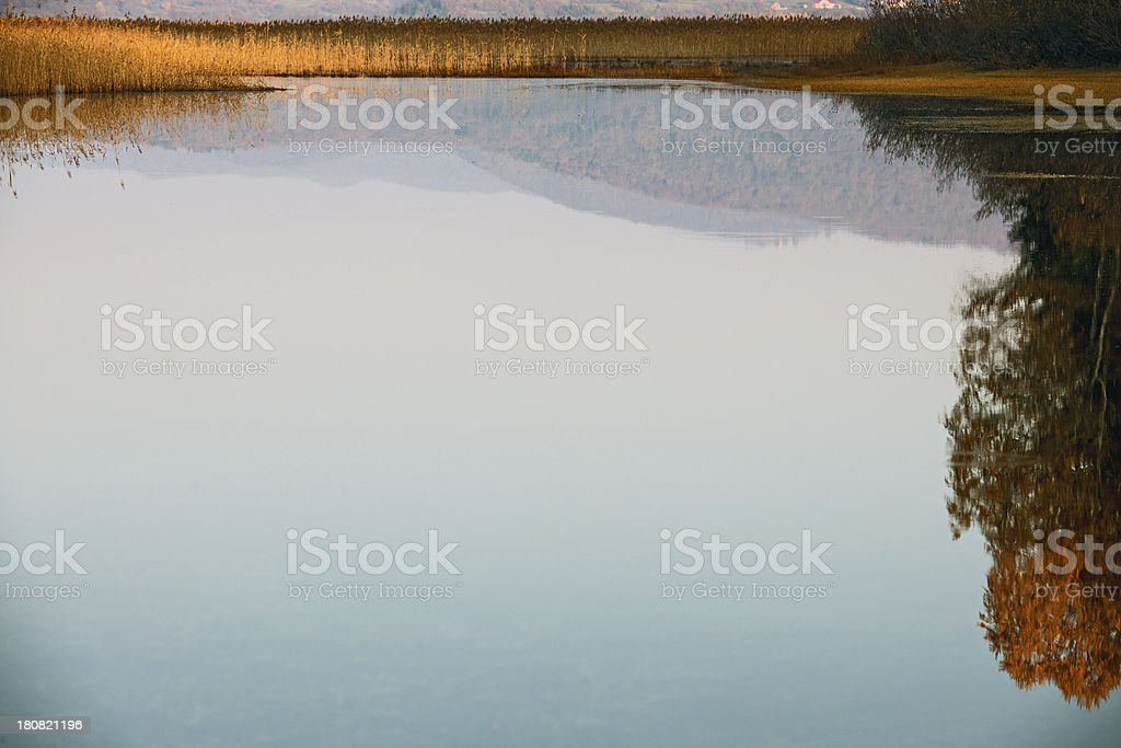 Autumnal Trees Reflecting in Lake Cerknica Slovenia stock photo