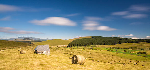auvergne countryside with hay field in france - chaine des puys photos et images de collection