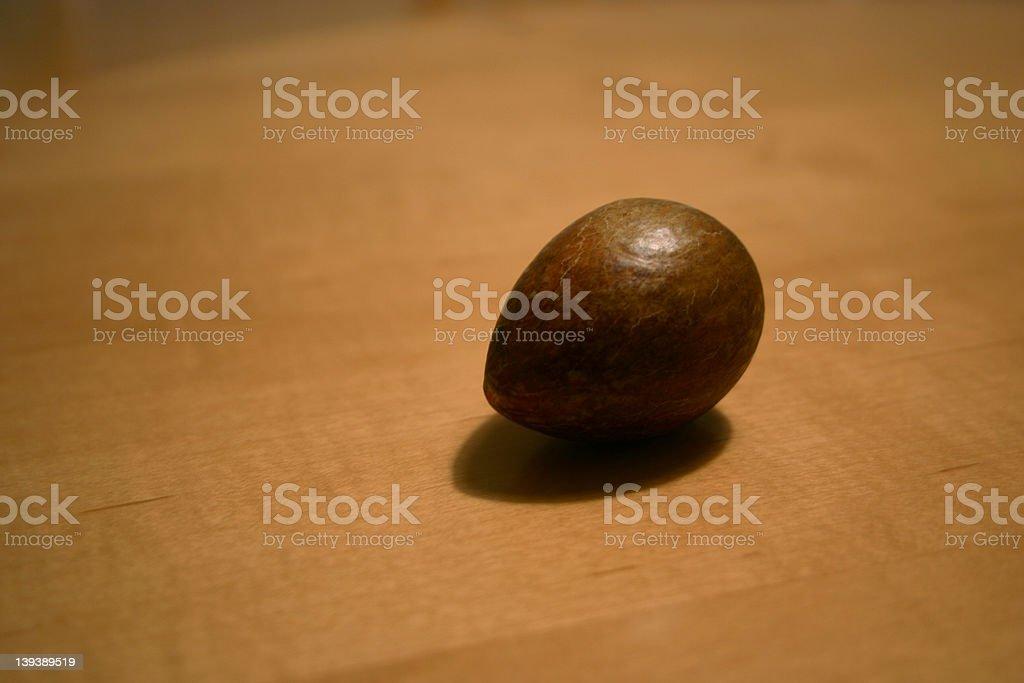 Avacado Seed on Wood royalty-free stock photo