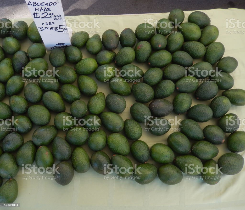 Avacados stock photo