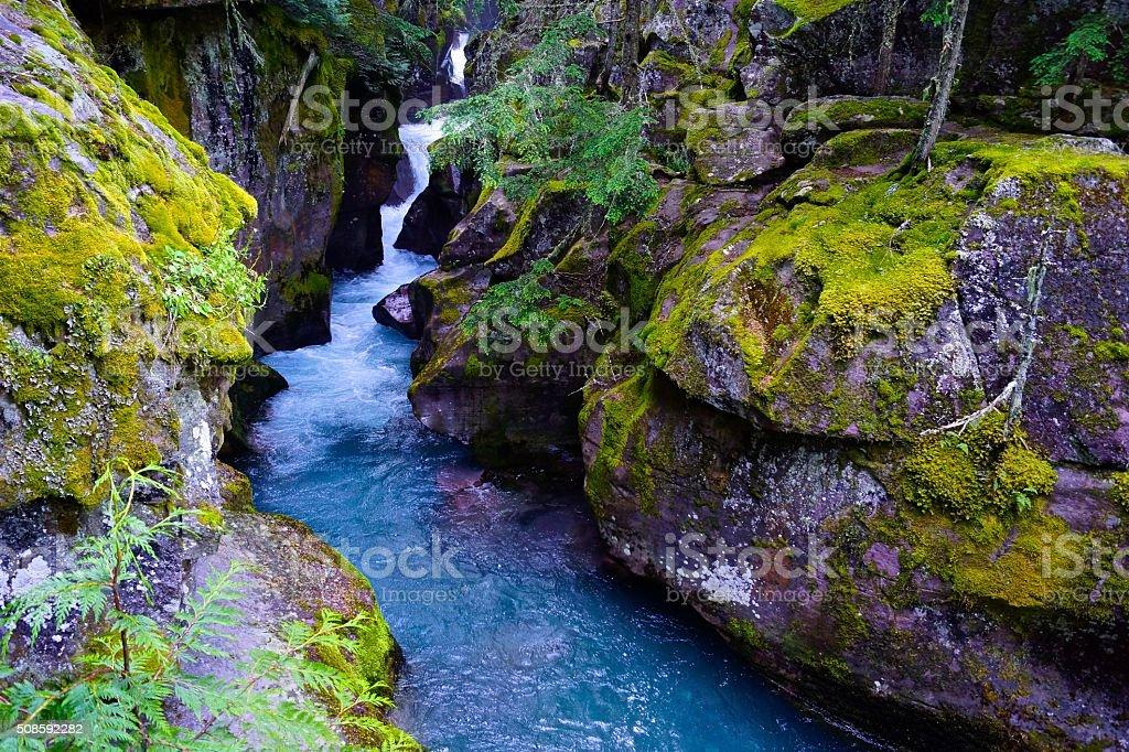 Avalanche Creek Gorge stock photo