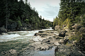 Rapids on Avalanche Creek in Glacier National Park