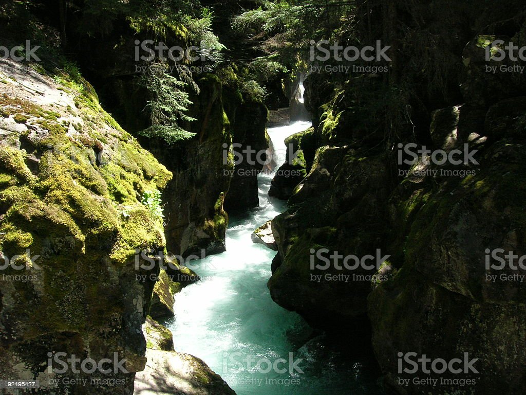 Avalanche Creek royalty-free stock photo