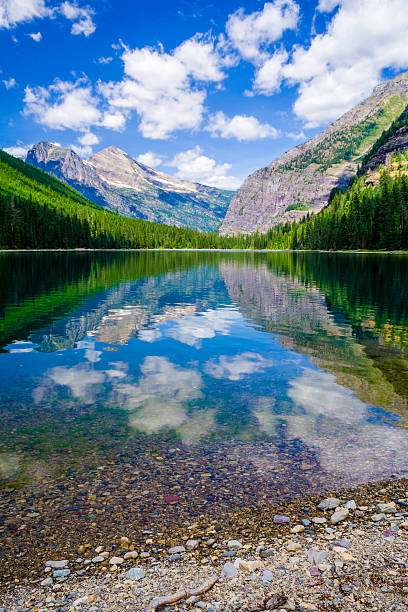 avalanche lake - us glacier national park stock pictures, royalty-free photos & images