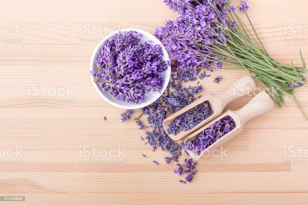 Avender Blumen – Foto