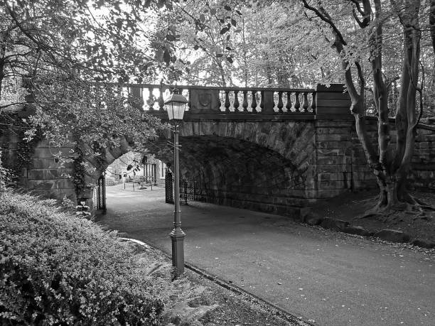 Avenham and Miller Park Black and white photography of the park in Preston, Lancashire miller park stock pictures, royalty-free photos & images