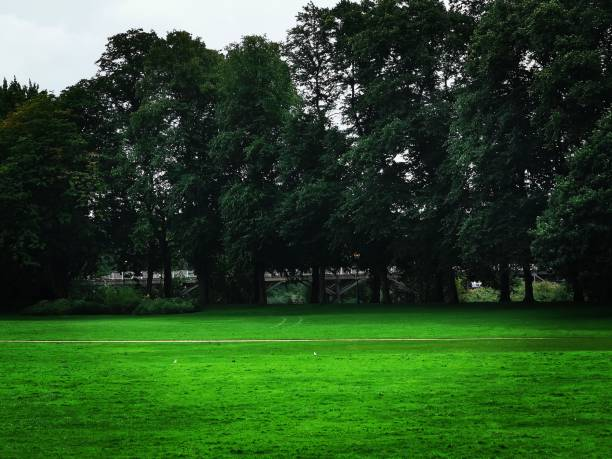 Avenham and Miller Park A cloudy day over in Preston, Lancashire miller park stock pictures, royalty-free photos & images