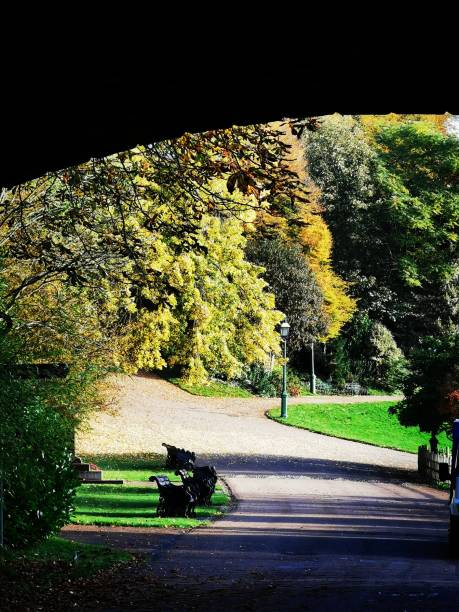 Avenham and Miller Park Autumn sunshine in the park in Preston, Lancashire miller park stock pictures, royalty-free photos & images