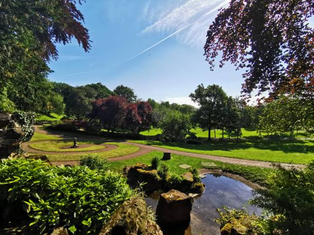 Avenham and Miller Park, Preston A stunning summer's morning in the park miller park stock pictures, royalty-free photos & images
