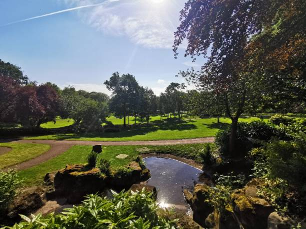 Avenham and Miller Park, Preston Stunning summer's morning in the park miller park stock pictures, royalty-free photos & images