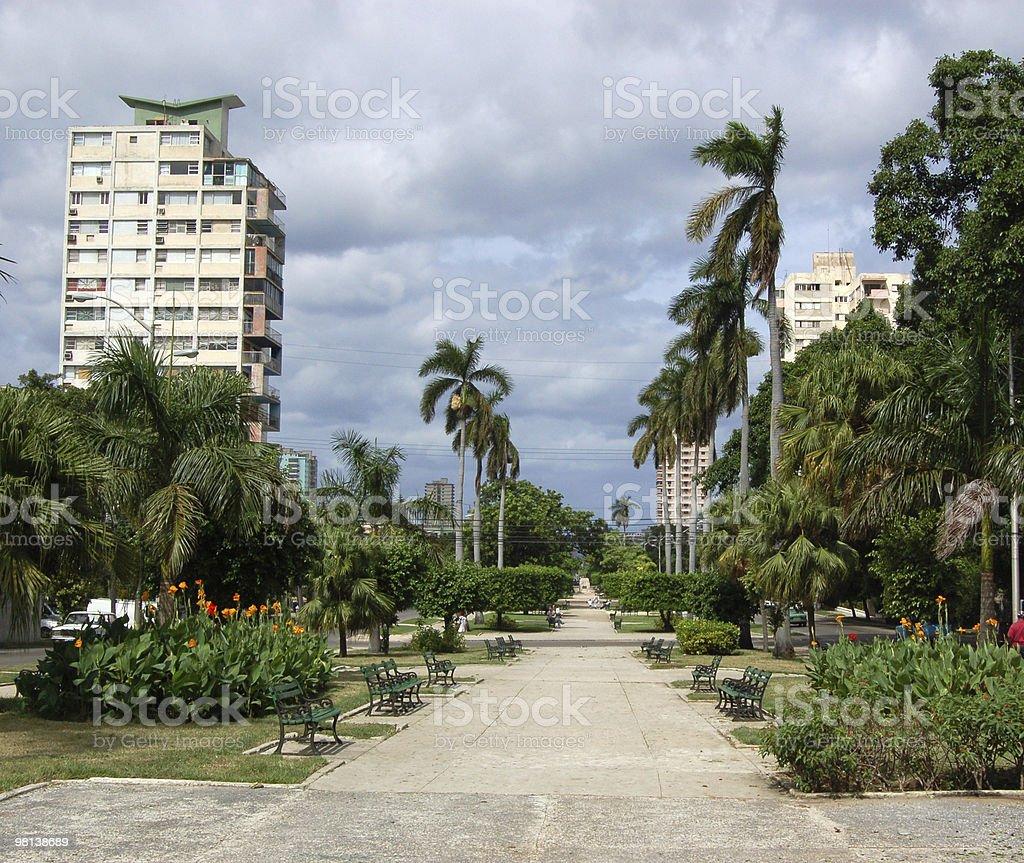 Avenida de los Presidentes, l'Avana foto stock royalty-free