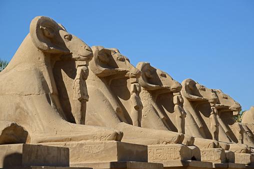 Avenue of sphinxes - Luxor