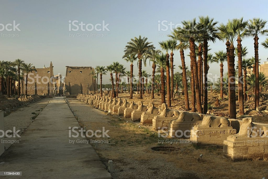 Avenue of sphinxes, Temple at Karnak, Egypt stock photo