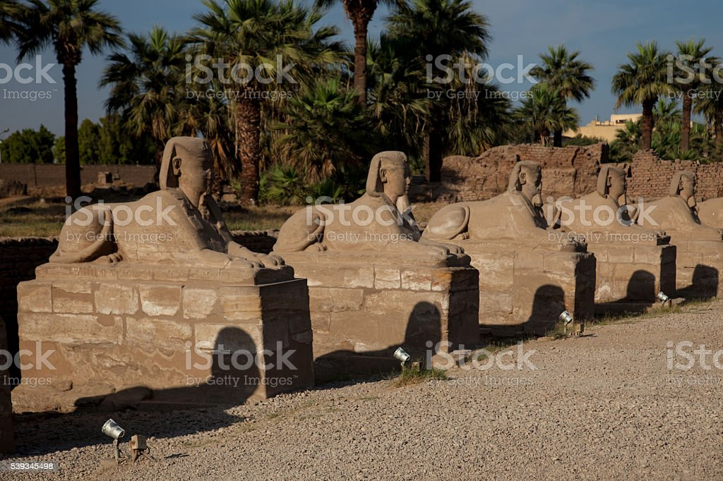 Avenue of Sphinx's stock photo
