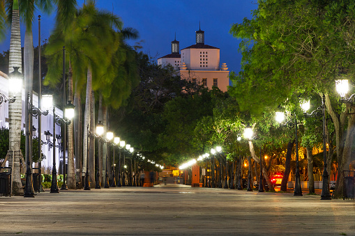 istock Avenue San Juan at night 619526810