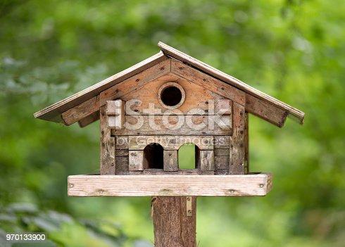 Aviary, Bird House, Forest, Austria