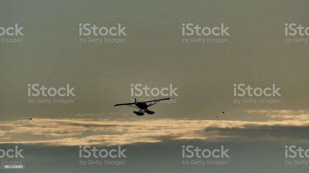 Avion à la lueur du soleil couchant avec des oiseaux dans le ciel stock photo