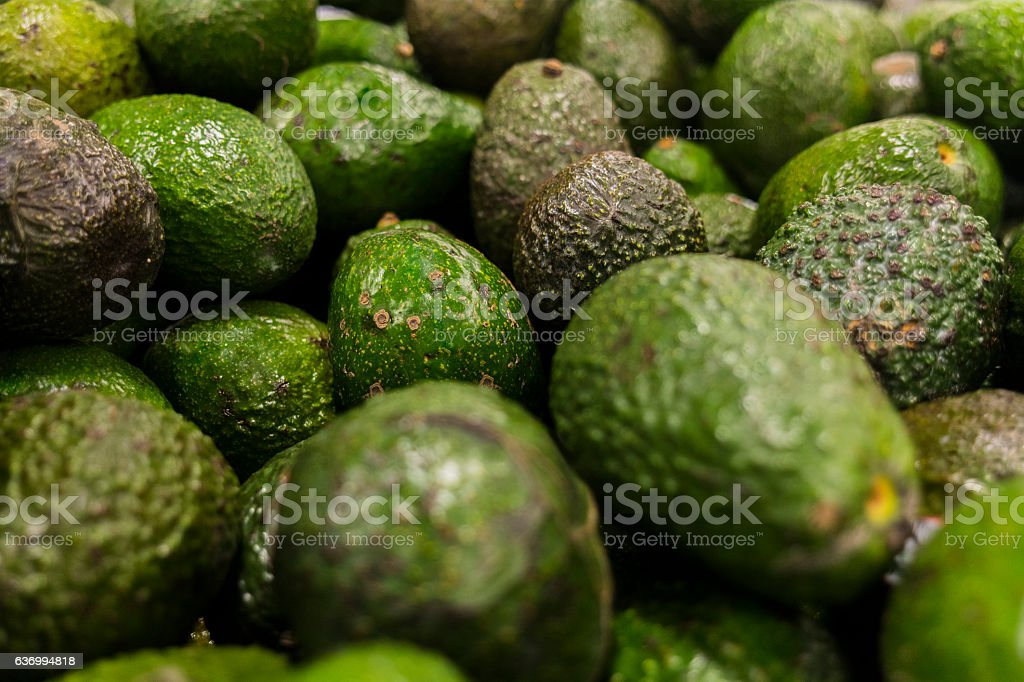 Avocado background. stock photo