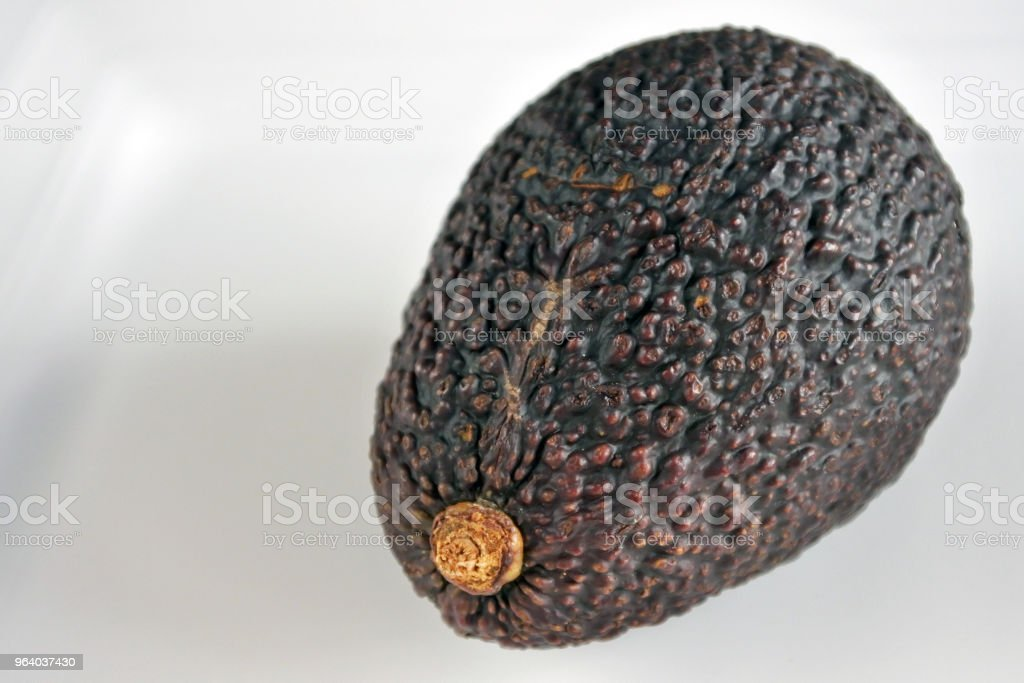 Avocado fruit background - Royalty-free Avocado Stock Photo