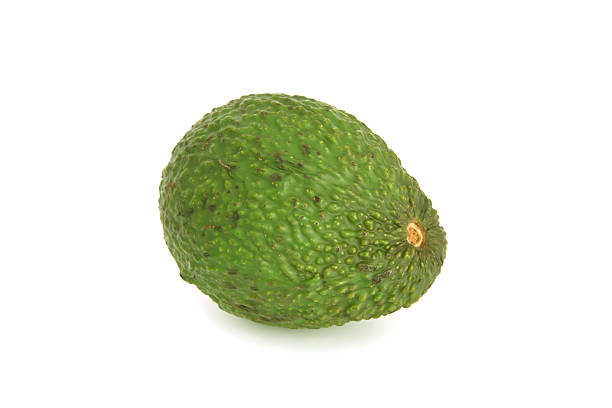 Avocado Früchte – Foto