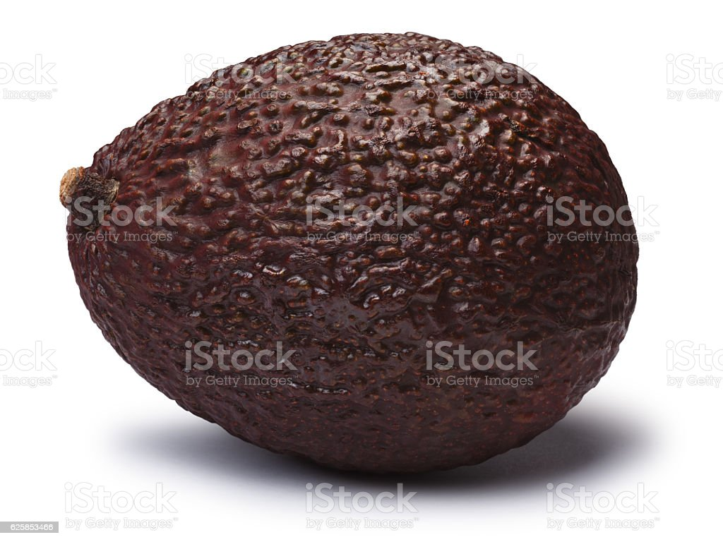 Avocado Hass Bilse, brown (Persea americana), paths stock photo