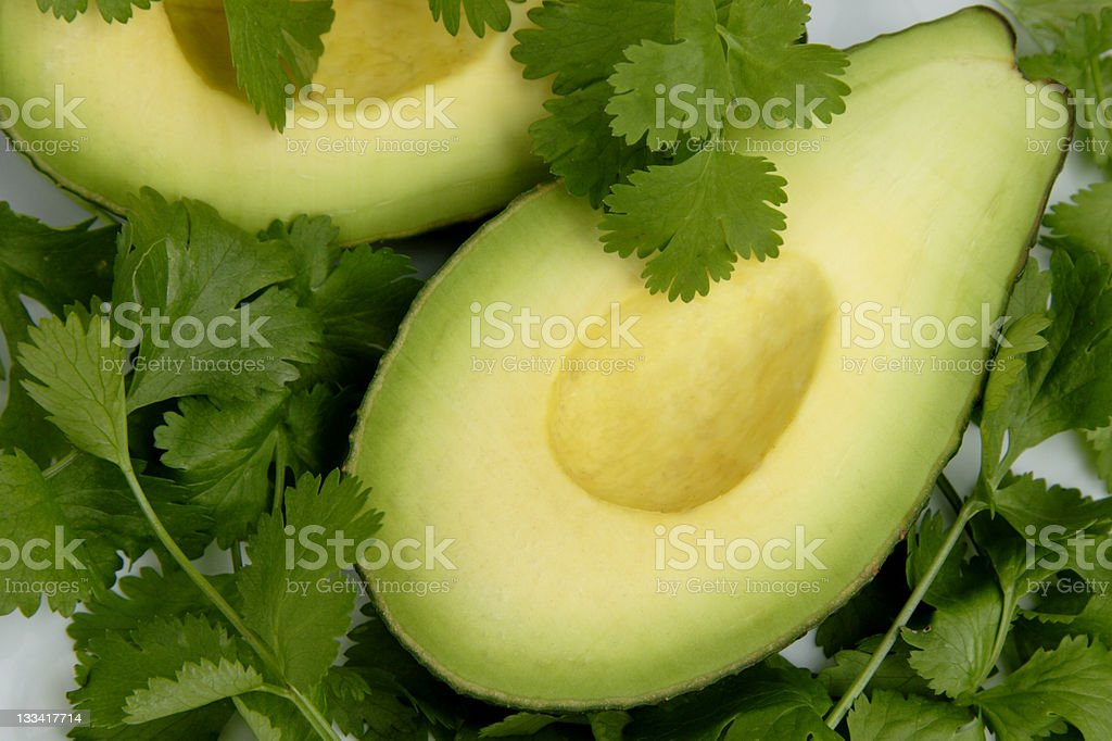 Avocado in a bed of cilantro royalty-free stock photo