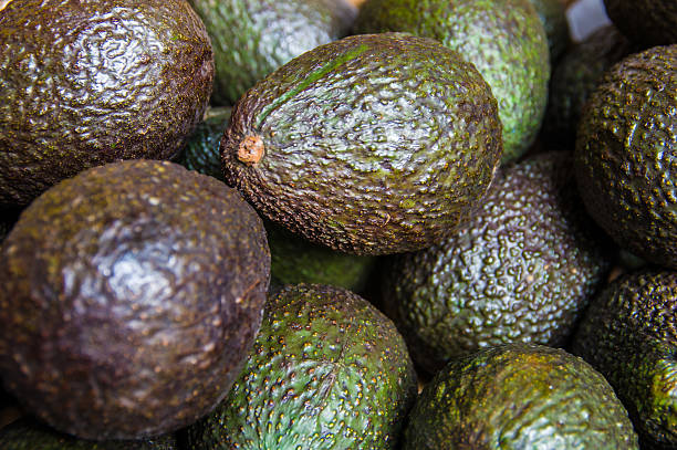 Avocado in a market stock photo